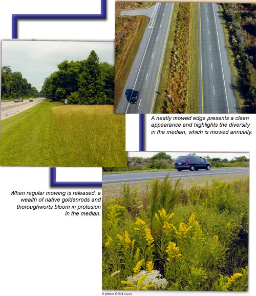 collage showing divided highwayand roadwide vegetation
